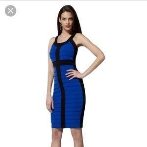 Cache colorblock bodycon dress